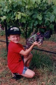 Mega_Grapes